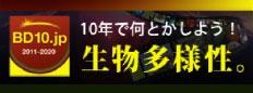 BD10.jp
